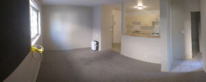 2 Bedroom apartment available September 1st - Adelaide St