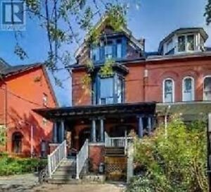 1 Bd basement Apartment for Rent near College and Bathurst