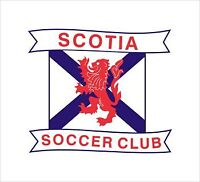 Senior Women's Soccer team looking for players