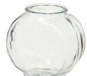 Wanted A glass fish bowl - 1 or 2 Gallons --- Please contact