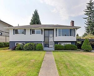 $2600 /Four Bedroom House For Rent Available November 1st, 2017
