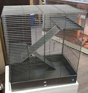 cage pour rongeur Jovaco, idéal pour rat
