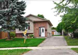 House for Rent London Ontario image 2