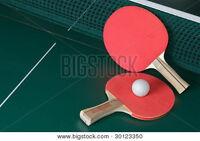 Club de Ping-Pong dans Rosemont