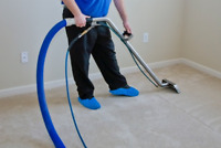 PROFESSIONAL CARPET CLEANER -- STEAM CARPET AND UPHOLSTERY CLEAN