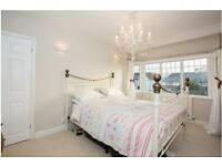 Beautiful large double room in sought after road in St Albans