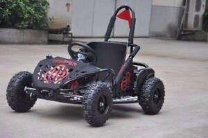48 Volt Go Kart & ATV 36 Volt (www.asimstoys.com.au)
