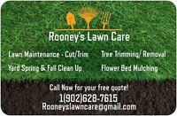 Rooney's Lawn Care