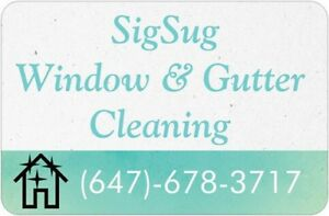 Window and Gutter Cleaning   Free Quote