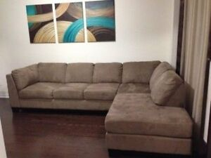 Large 7 seat couch