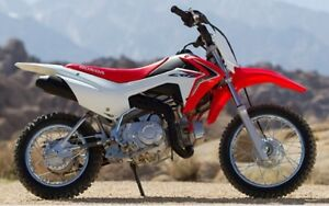 Wanted Crf110f