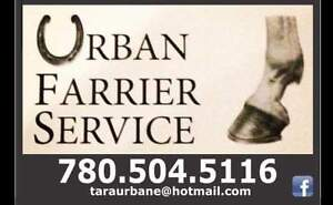 Farrier Accepting Clients