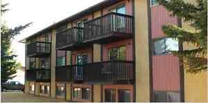 Vulcan, Alberta newly renovated spacious apartments for rent