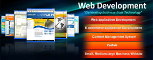 Why should you choose us for your Website Design/Development?