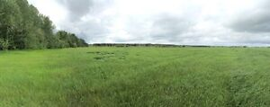 159 Acres in Goodridge Alberta (Bonnyville MD) Strathcona County Edmonton Area image 4