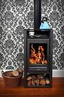 Modern Woodburning Stove