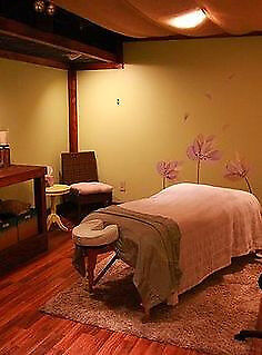 Home visiting massage in Surrey. From Pain Relief Deep Tissue or Sport Massage to Relaxing Massage!