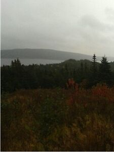 4 SERVICED BUILDING LOTS OCEAN VIEW 30 MIN. FROM ST. JOHN'S