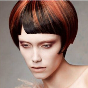 HAIR CUTS $7, COLOUR $25, SCALP TREATMENT $8 Stratford Kitchener Area image 6