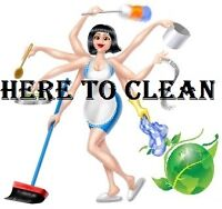 Professional Independent Cleaning Services Available
