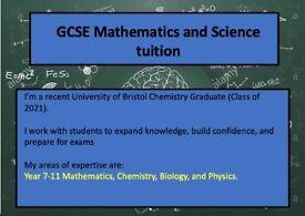 GCSE Science and Maths tutor