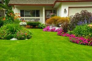 Round the clock lawn care