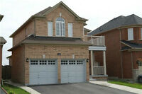 Basement Apartment For Rent at Boarder Of Castlemore/Vaughan