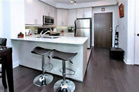 1 Bedroom Condo Next to Union station with parking facility