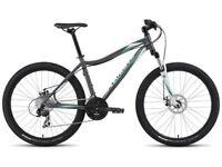 Ladies mountain. Bike