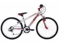 """GREAT OFFER Raleigh Zero G 24"""" Boy's Kid's Bike (24"""" Wheel)"""