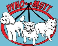 Dyno-Mutt Dog Walking Little Italy/ Palmerston Toronto