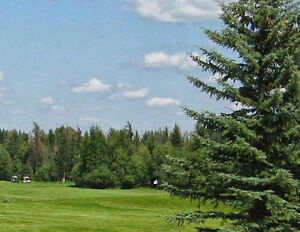 5 treed acres next to Wabamun Golf Course