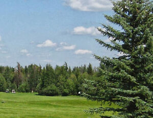 Treed 5ac by golf course 4 miles from town of Wabamun