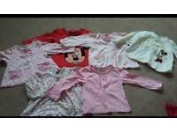 Baby Girl 9-12 months bundle