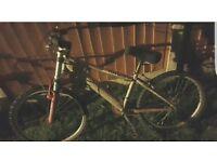 Saracen x ray mountain bike