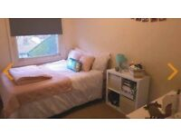 Single room for Rent in vibrant Montpellier