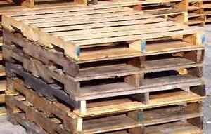Pallet Firewood
