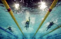 Learn to Swim or Improve Your Technique