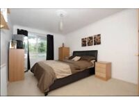 Fantastic one bedroom flat minutes from Upper Street
