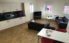 An En-suite room in a shared flat of 4 room £99pw