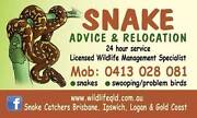 Snake Advice & Relocation   www.snakecatchers.com.au Brisbane Region Preview