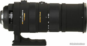 Sigma 150-500 lens with Nikon connection