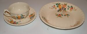 Great Grandma's antique china dinnerware LARGE SET!!