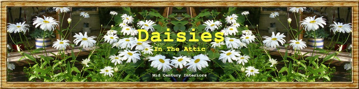Daisies In The Attic