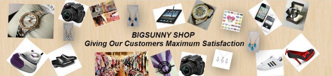 Bigsunnyservices Ltd