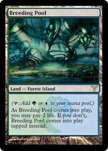 Breeding Pool Dissension  - Magic the Gathering