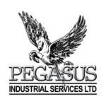 Pegasus Industrial Services Ltd