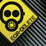 egr-delete | eBay Stores