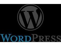 Need help with wordpress design ect..