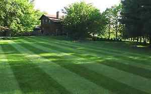 LAWN CARE  Matt's Property Maintenance  EVERYTHING YOU NEED Kawartha Lakes Peterborough Area image 4